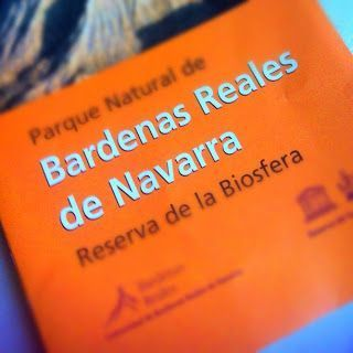 Día 1. Bardenas Reales y Olite.