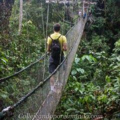 Gunung Mulu NP: Canopy Walk