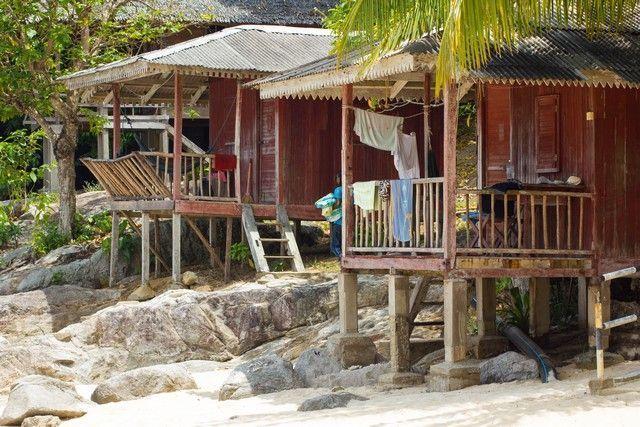 rainforest beach perhentian kecil malasia