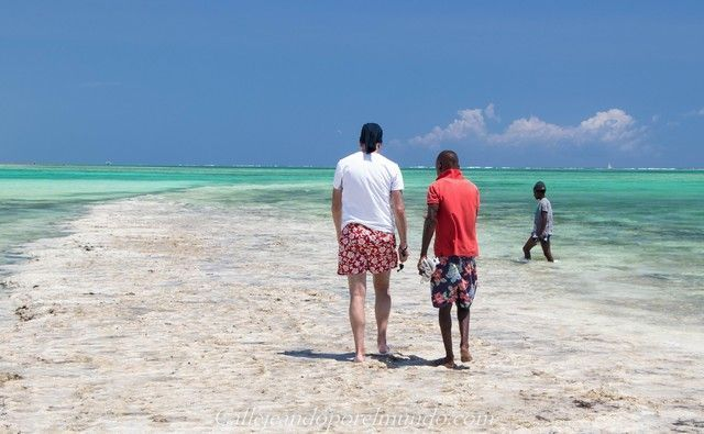 diani beach mombasa kenia (11)