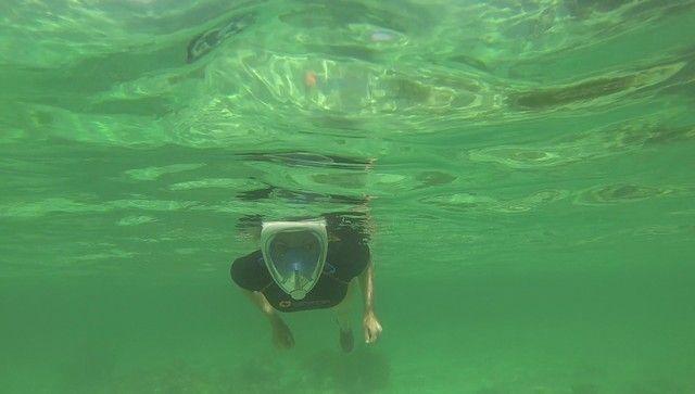 snorkel diani beach mombasa kenia (3)