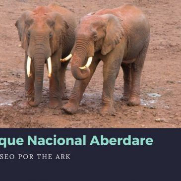 Parque Nacional Aberdare