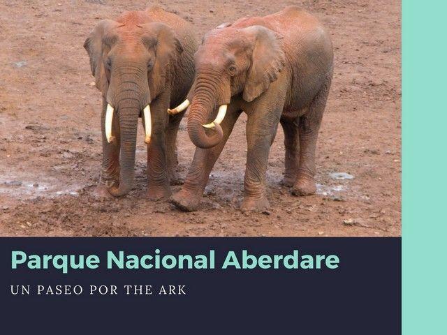 Parque nacional Aberdare The Ark