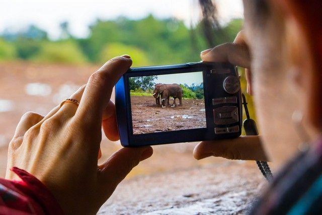 elefantes parque nacional aberdare kenia (5)