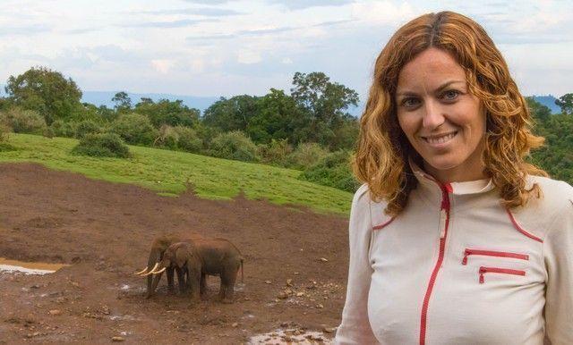 elefantes parque nacional aberdare kenia (8)