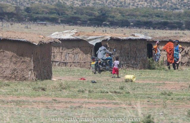 masai mara kenia (7)