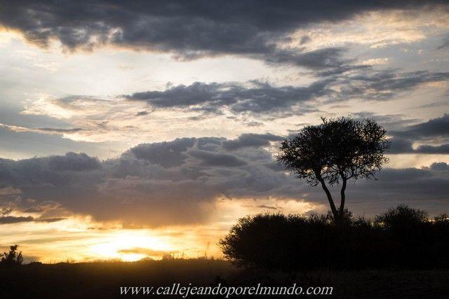 puesta de sol masai mara kenia (3)