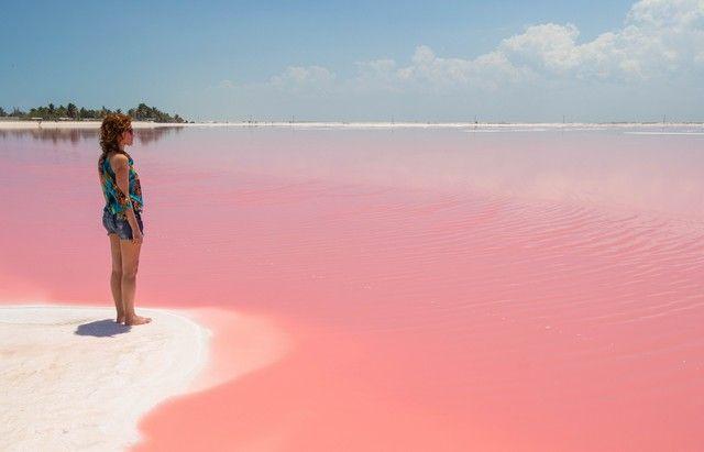 las coloradas rio lagartos yucatan (6)