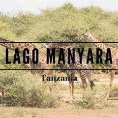 Lago Manyara, Tanzania