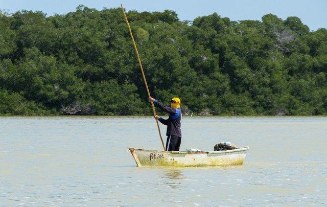 reserva biosfera ria celestún yucatan mexico (1)