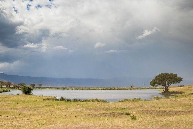 area de conservacion del ngorongoro tanzania (20)