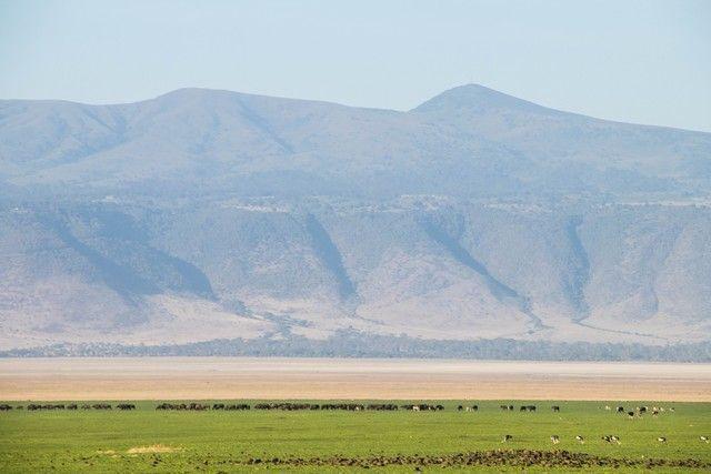 ngorongoro area de conservacion tanzania (1)