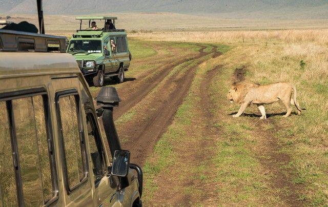 ngorongoro area de conservacion tanzania (21)