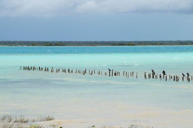 bacalar riviera maya yucatan mexico (28)