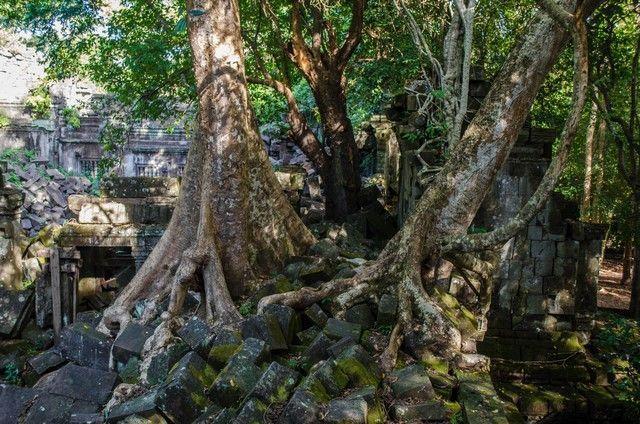 beng mealea templos de angkor camboya (5)