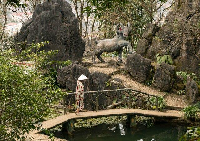 Ham Rong Mountain en Sapa (6)