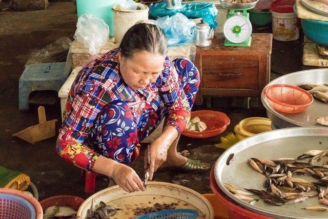 delta del mekong en 2 dias con asiatica travel (51)