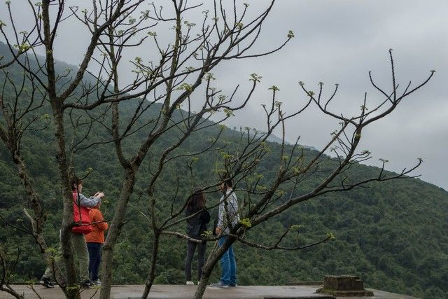 de hue a hoi an el paso de las nubes vietnam (3)