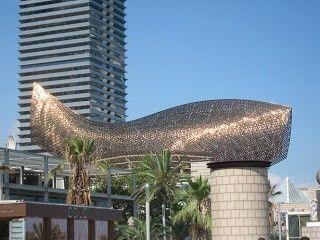 pez dorado barcelona