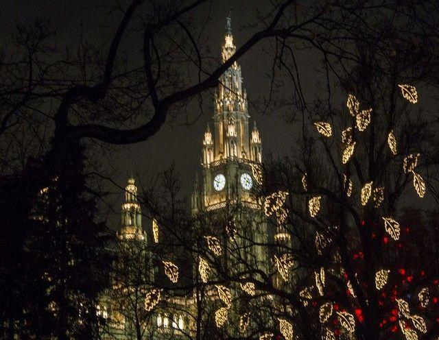 Rathausplazt nocturno navidad viena