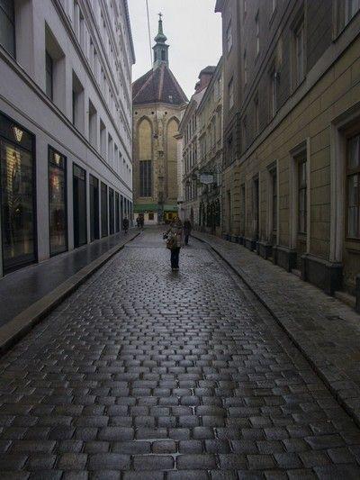calles de viena en navidad