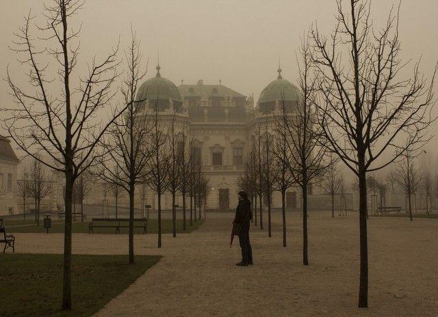 paseando por el palacio de belvedere navidad viena