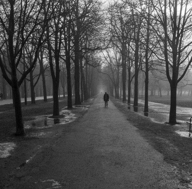 prater navidad niebla viena