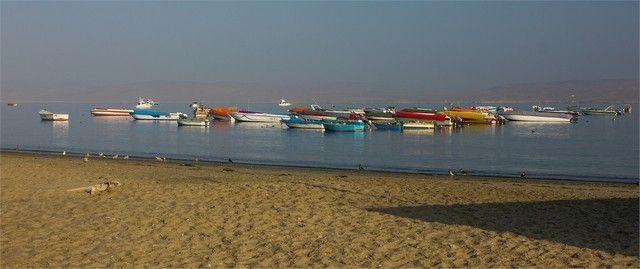 playa de paracas peru