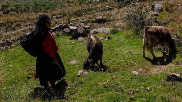 pastores taquile lago titicaca peru
