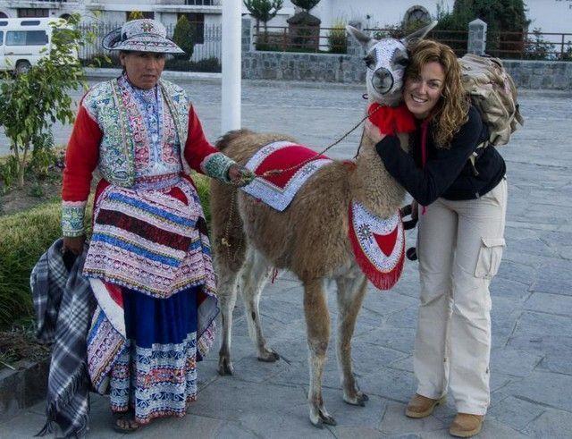 plaza de armas de yanque peru alpaca