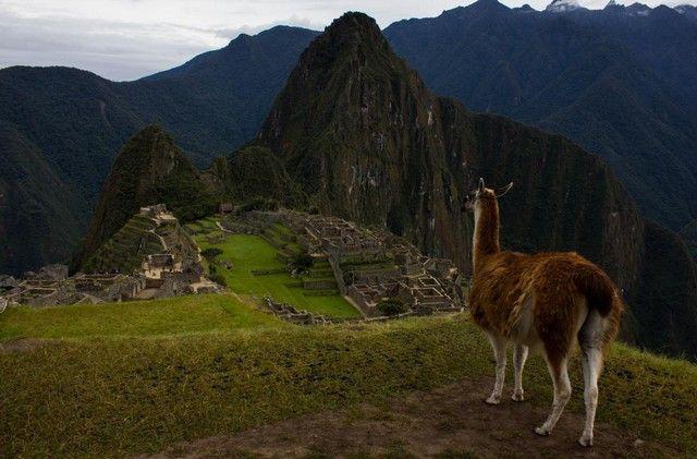 Machu Picchu imagen general