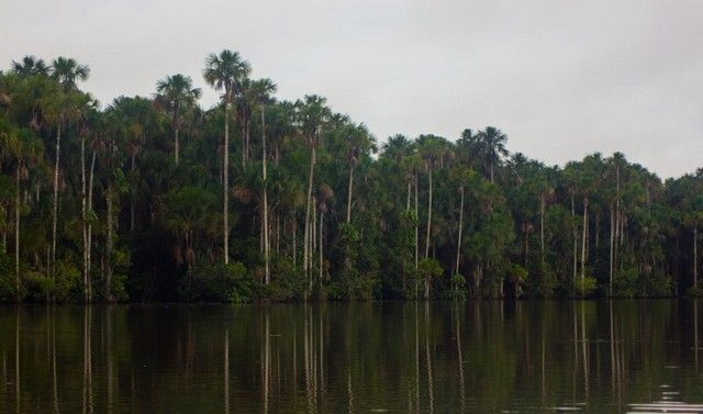 lago sandoval peru amazonas