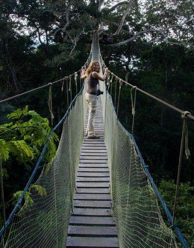 puente colgante reserva tambopata peru