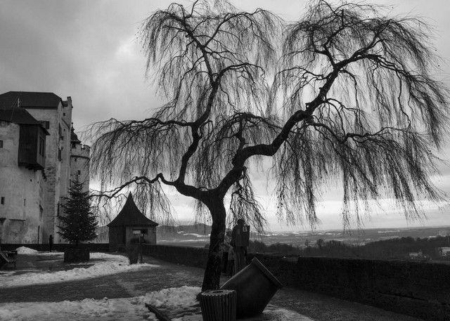 imagenes de Salzuburgo desde La fortaleza
