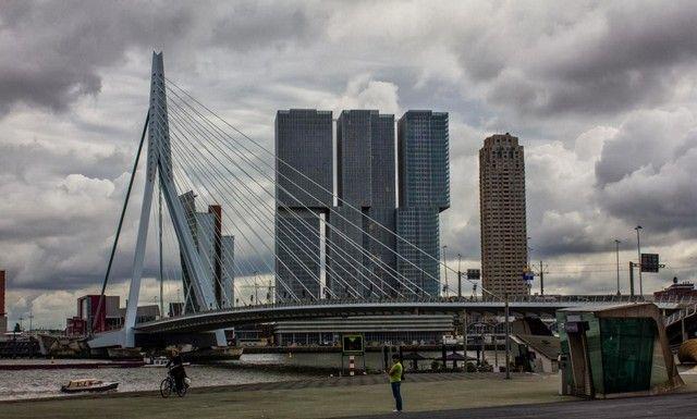 puente erasmus rotterdam holanda