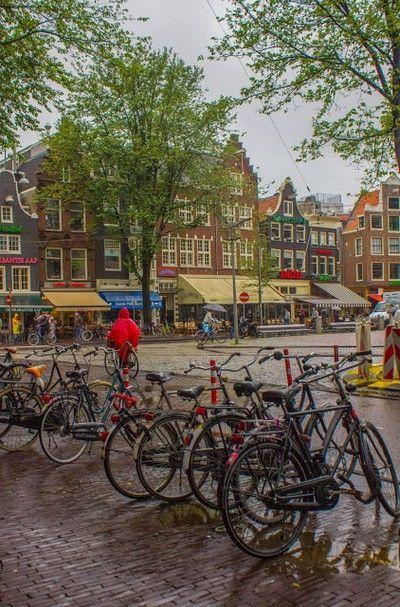 plaza spui amsterdam