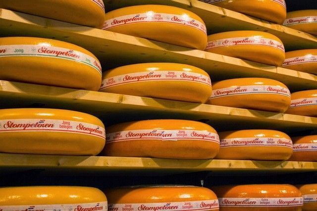 quesos gouda holanda