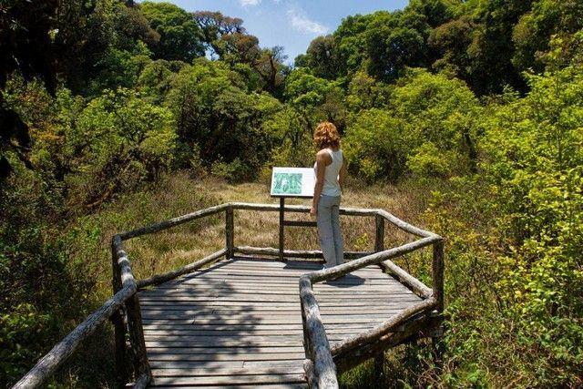 Ang Ka Nature Trail chiang mai