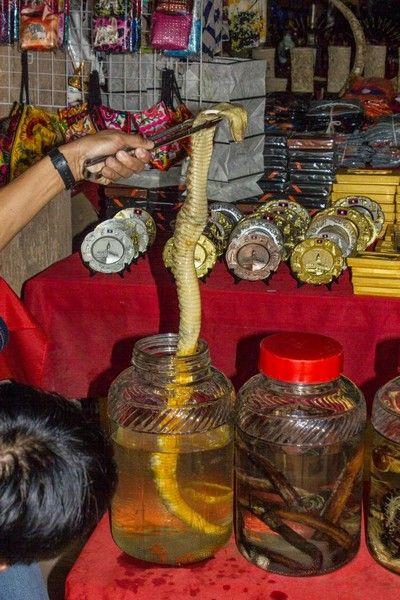 laos desde chiang rai