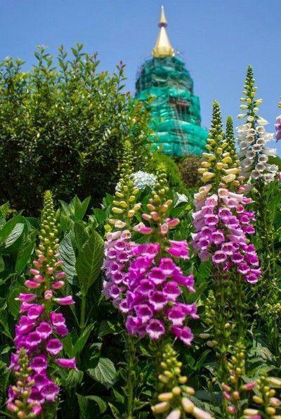 pagodas doi inthanon chiang mai