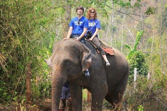woody elephant training paseo 2