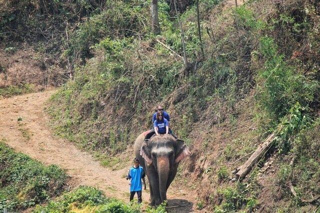 Foto cedida por Woody Elephant Training