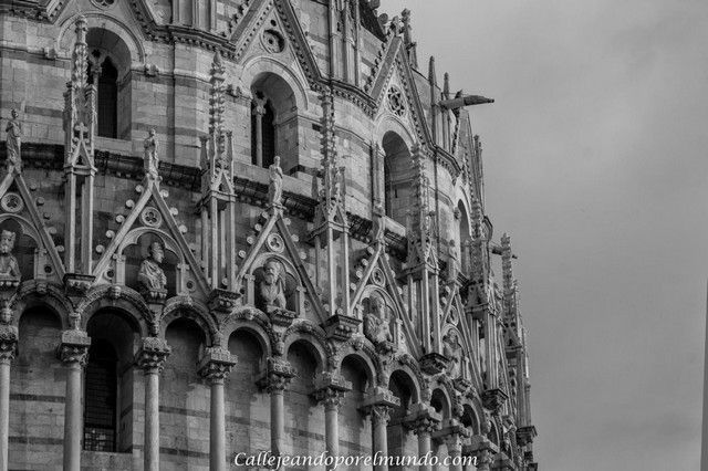 Pisa Duomo detalle