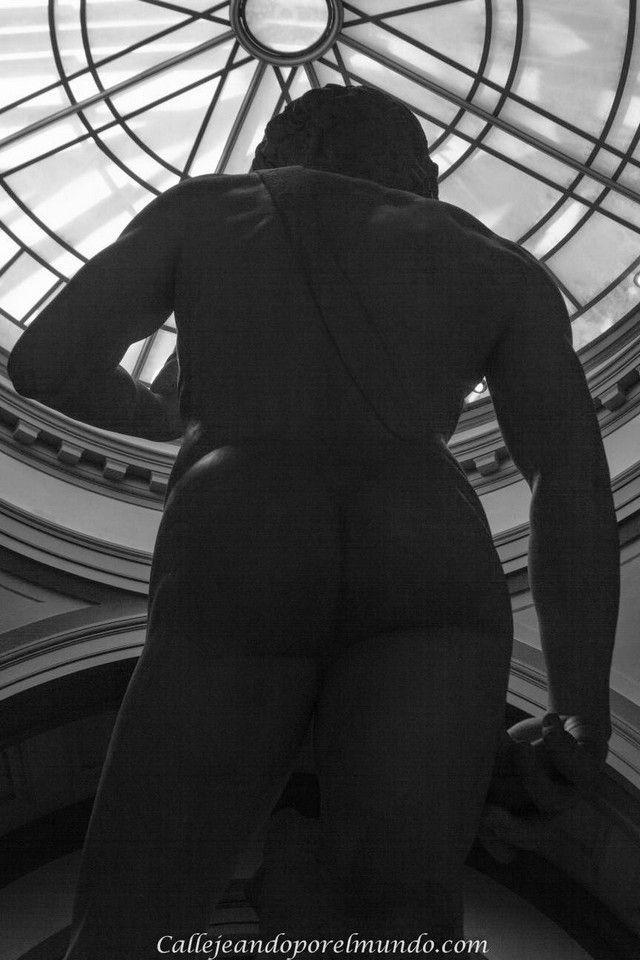 Florencia - La Academia - David Miguel Angel espalda