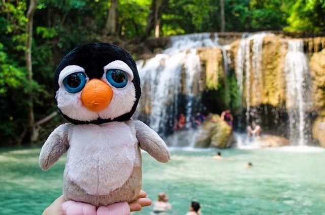 Última foto de Pingus, en Erawan Tailandia.