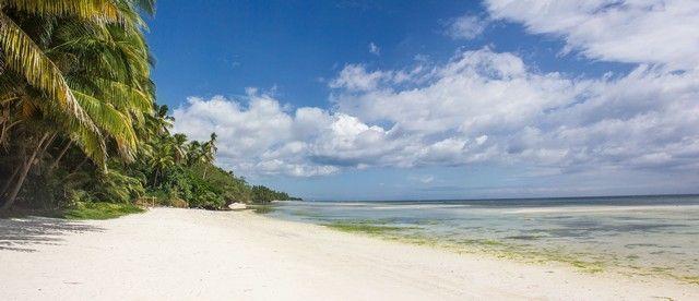 paliton beach panorámica