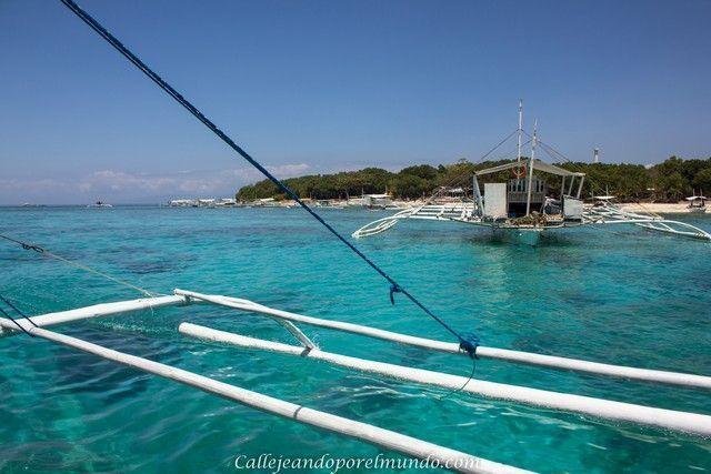 balicasag buscando tortugas filipinas