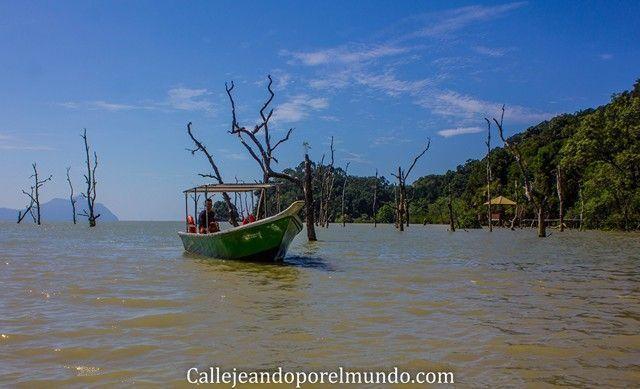 barca parque nacional bako borneo malasia