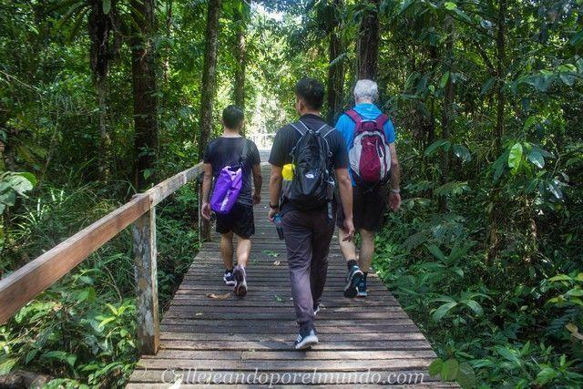 camio hacia deer cave borneo malasia gunung mulu