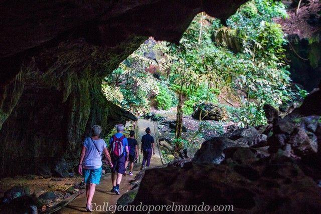 deer cave gunung mulu borneo malasia entrada